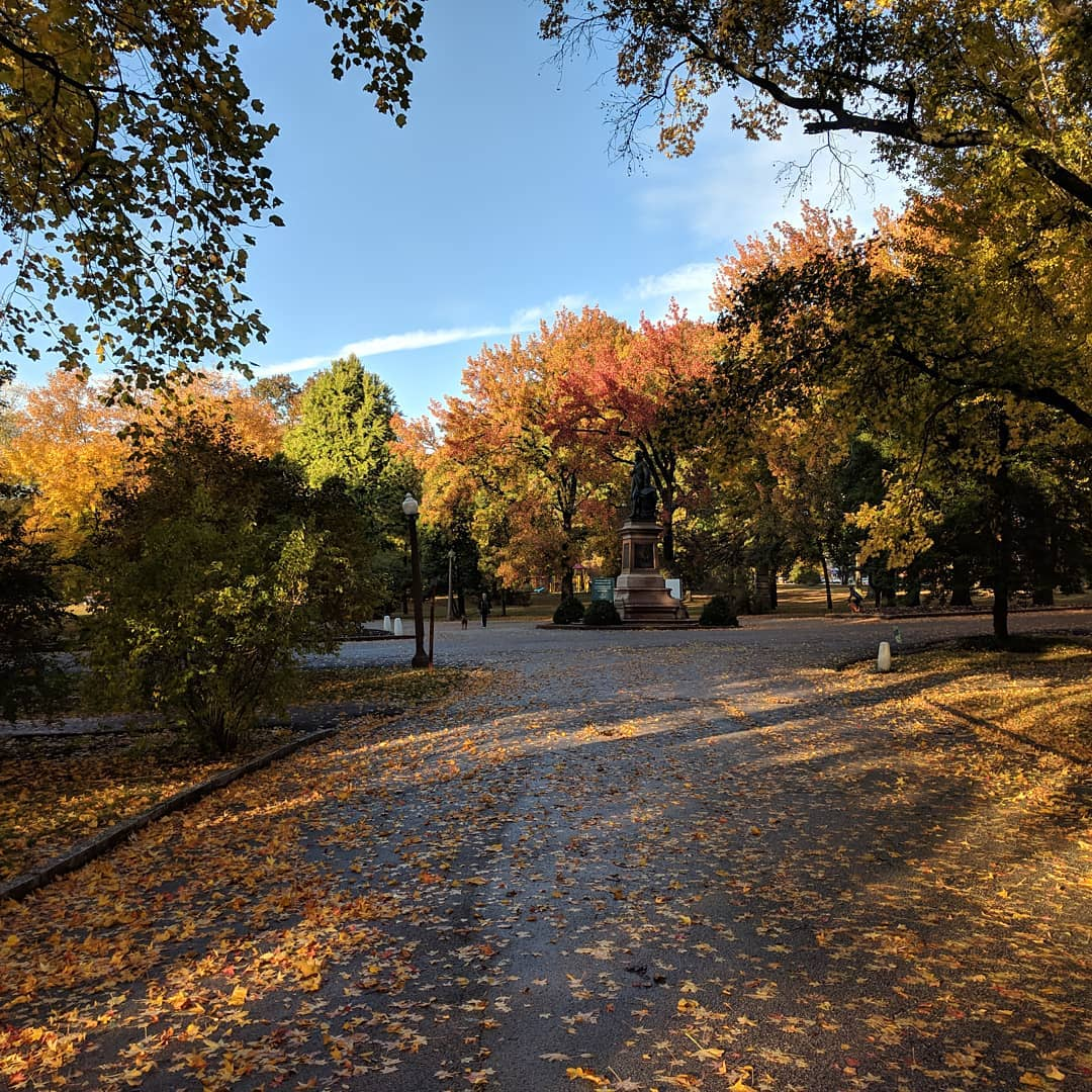This time of year is just amazing when that sunlight catches the trees in Tower Grove Park #citylife #stlouis #fallcolors