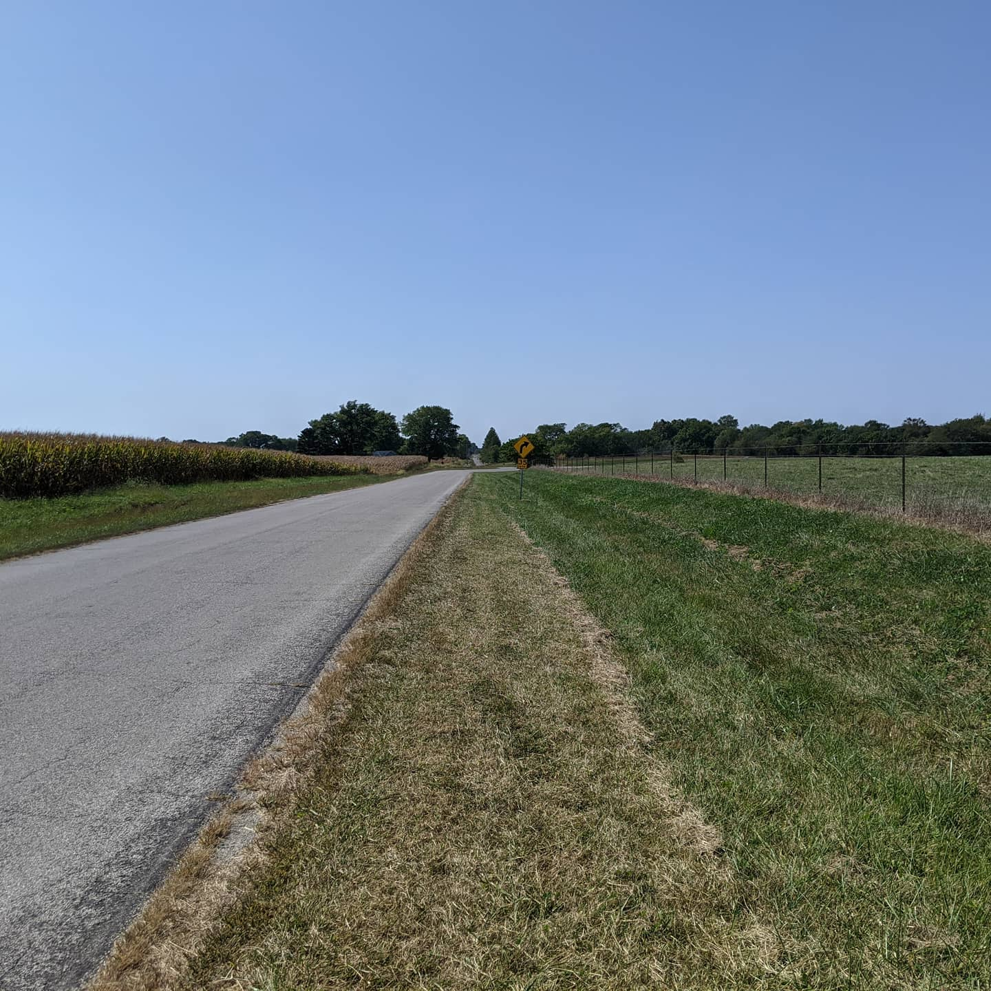 This is what a lot of old route 66 looks like in Illinois #roadtrip #route66This is actually one of the better stretches