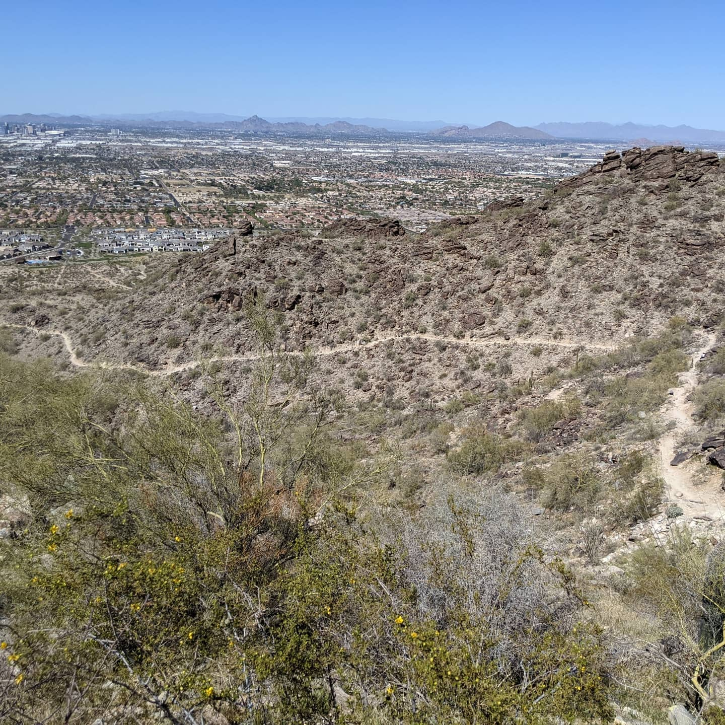 A few random shots from my hike yesterday that I thought people might appreciate. #phoenix